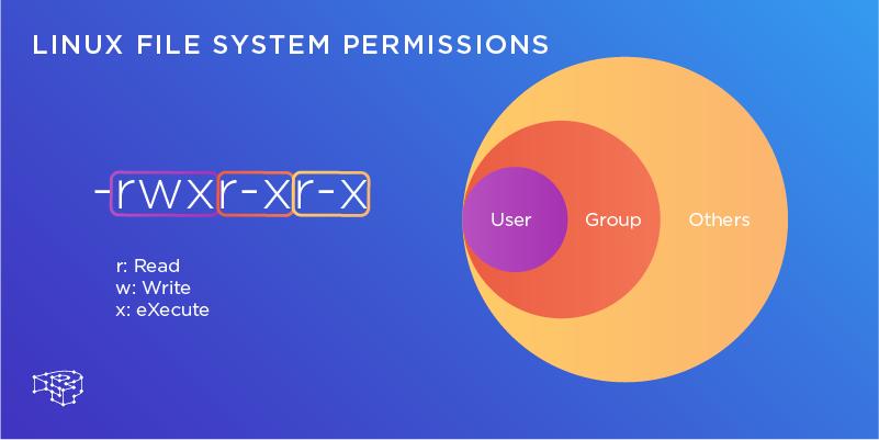 Deciphering Linux File System Permissions - Pressidium® Managed